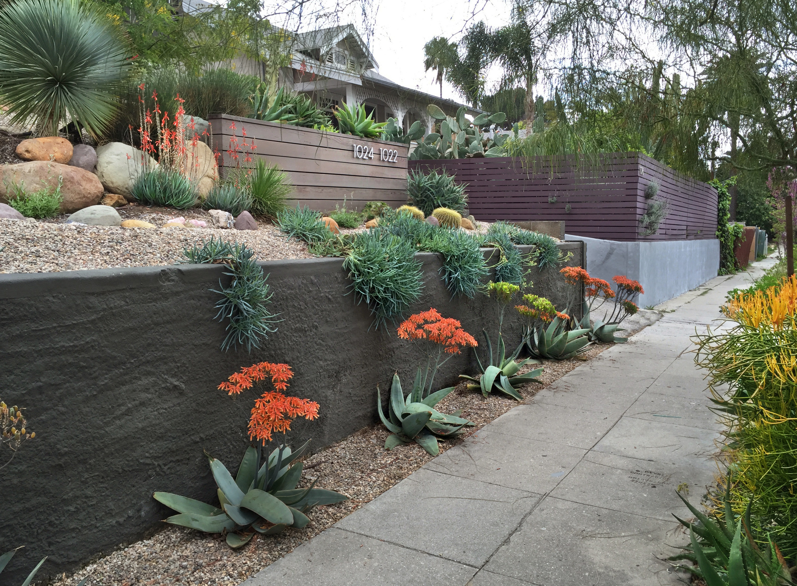 75 Beautiful Desert Front Yard Landscaping Pictures Ideas March 2021 Houzz