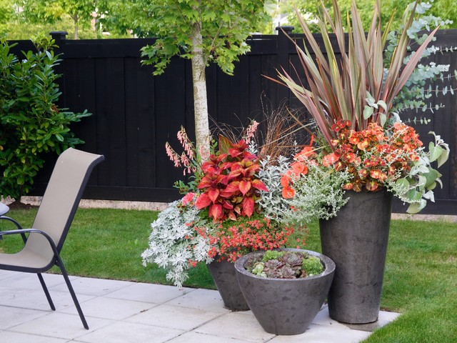 container gardening magazine 2012 edition traditional landscape vancouver by pot. Black Bedroom Furniture Sets. Home Design Ideas