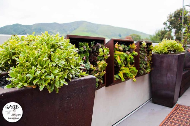Contemporary Balcony Garden Small Space Landscapes