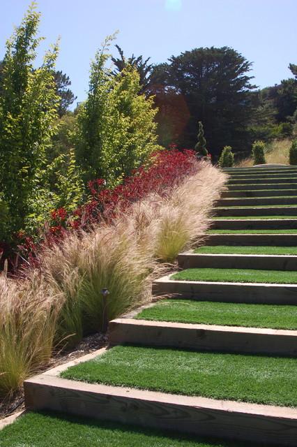 Contemporary hillside garden contemporary landscape for Contemporary grasses