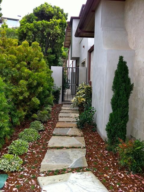 Contemporary La Jolla - landscape architecture, courtyard, pool, italian cypress contemporary-landscape