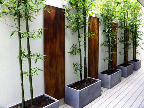 Bon Garden Ideas, Landscaping Ideas, Vertical Planting, Small Garden,  Trellises, Living Wall
