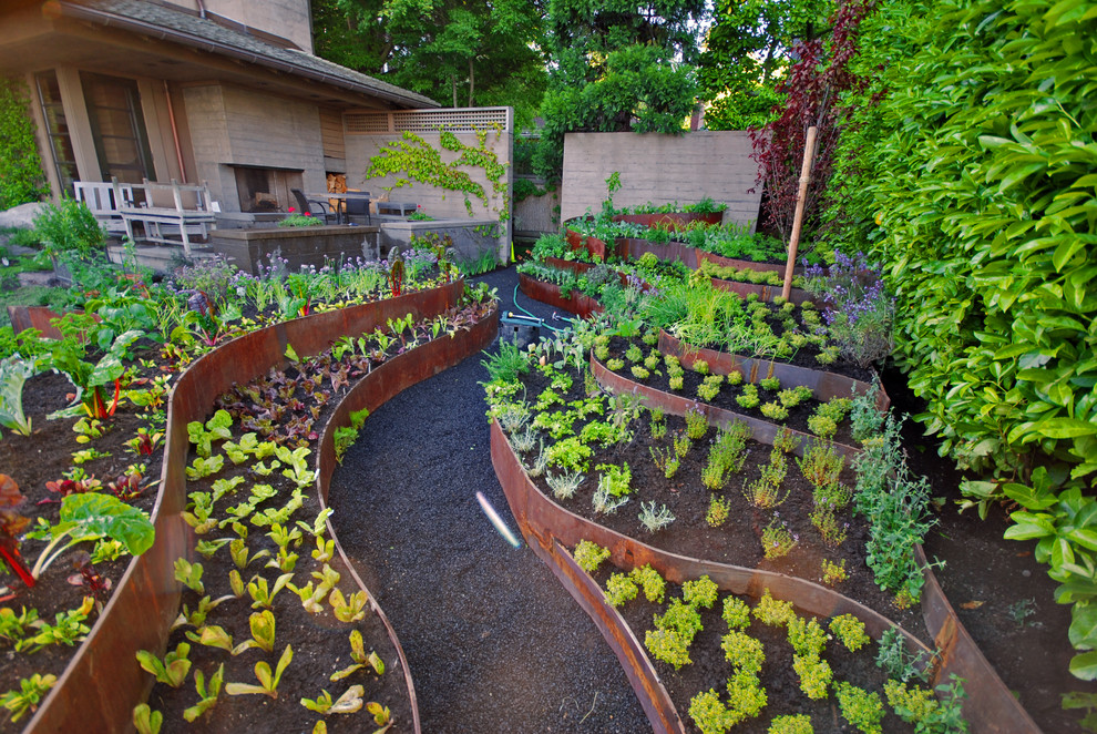This is an example of a contemporary vegetable garden landscape in Other.