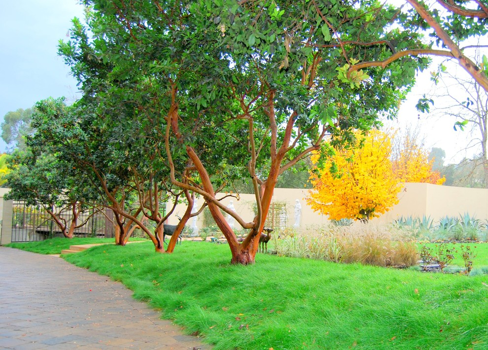This is an example of a traditional landscaping in San Francisco for fall.
