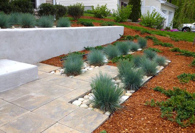 Contemporary planting with blue fescue grasses for Contemporary grasses