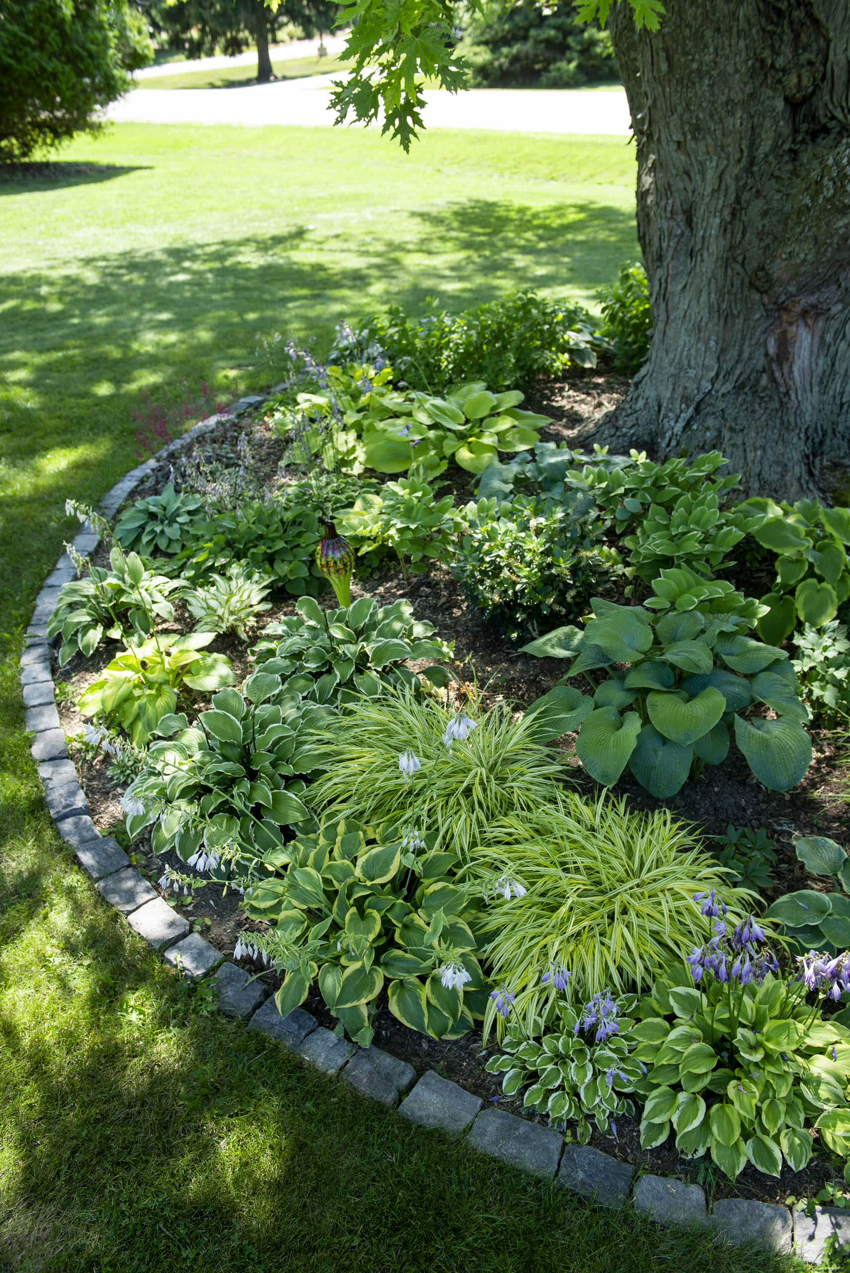 Contemporary Shade Garden - Mequon