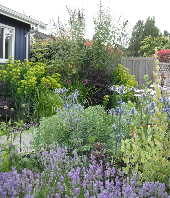 Cottage Perennial traditional landscape