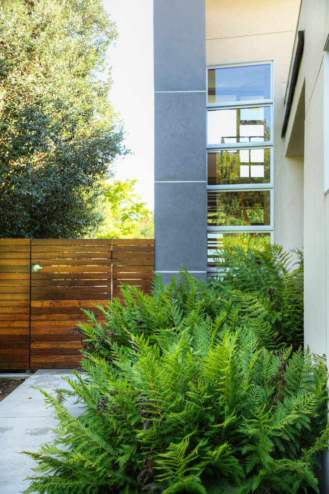 This is an example of a modern side yard landscaping in Sacramento.