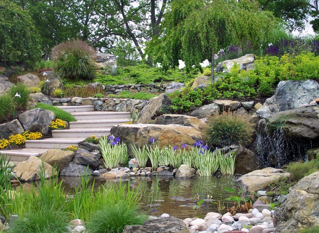 Creative sustainable waterfront landscape design eastern for Land design landscaping