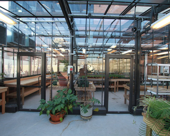 Cross Country Commercial Greenhouses - Rooftop Greenhouse -