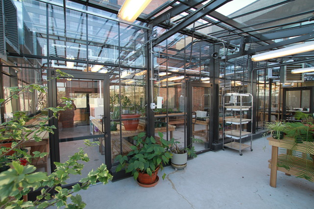cross country commercial greenhouses rooftop greenhouse rh houzz co uk greenhouse roof ideas greenhouse roof bars