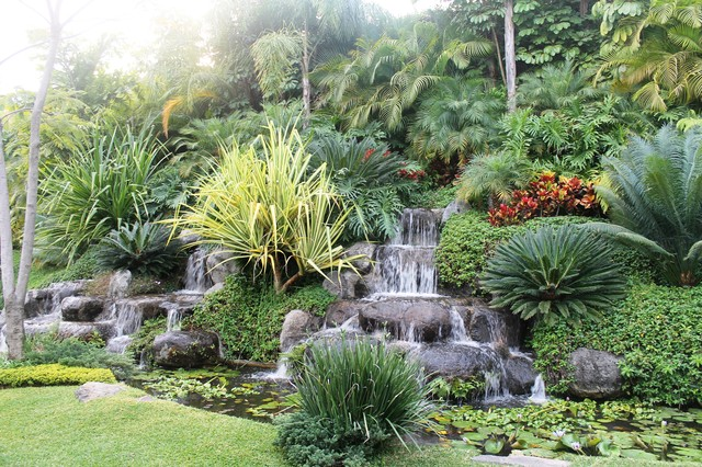 Waterfall Landscape Design Ideas garden and patio large backyard landscape design with low stone waterfall ponds rocks This Is An Example Of A Tropical Landscape With A Water Feature