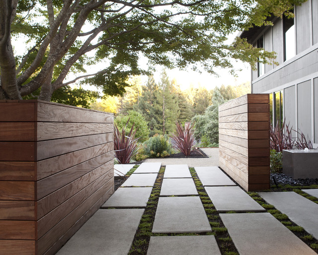 Curb appeal modern landscape san francisco by for Modern backyard landscaping