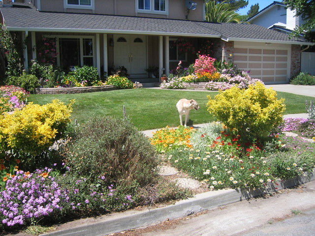 Curb Appeal with color eclectic-landscape