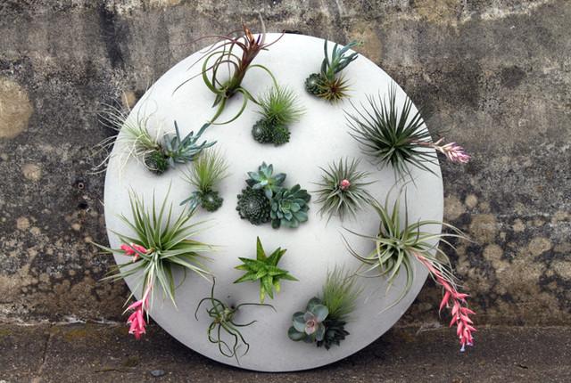 Custom Living Wall Sculpture modern-garden