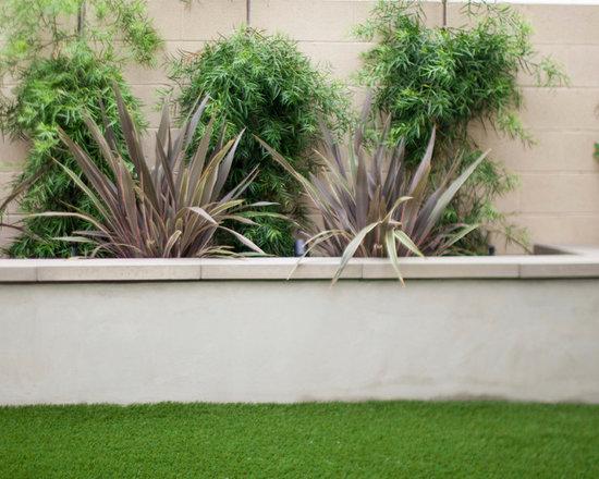 Modern Raised Stucco Planter Wall Outdoor Design Ideas