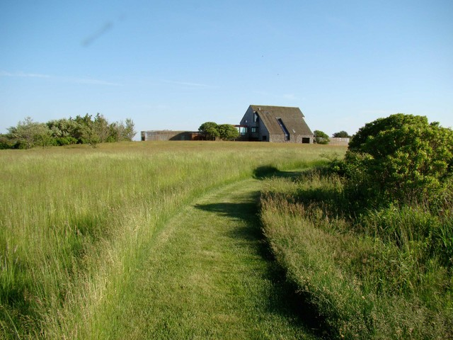 Daniels Lane in Sagaponack contemporary-landscape