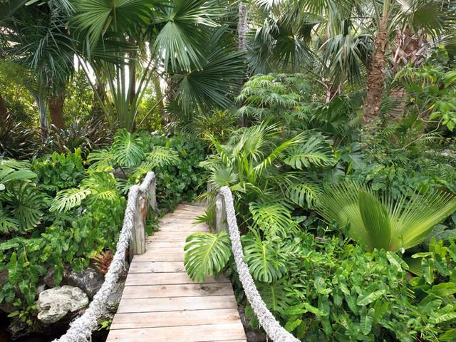 Davids Garden Tropical Landscape Miami By Raymond Jungles