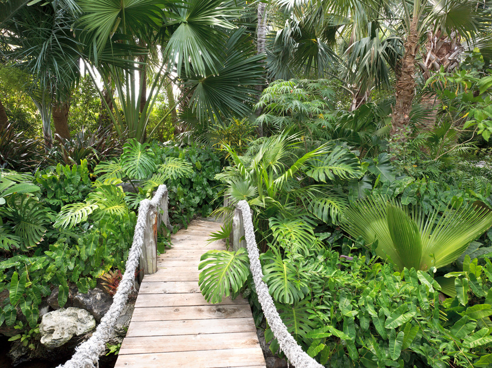 Photo of a tropical shade backyard landscaping in Miami with decking.