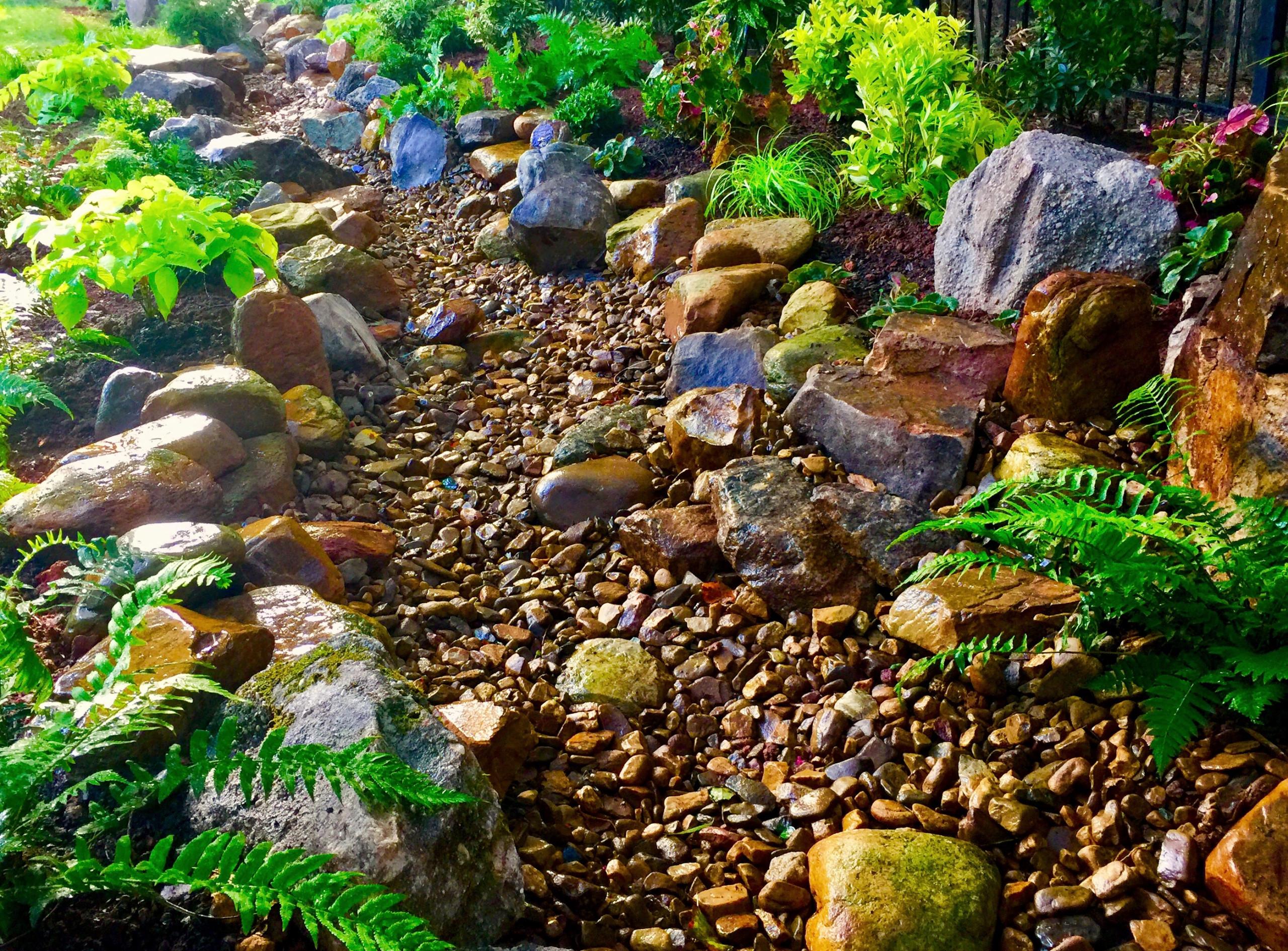 Davidson dry creek bed.