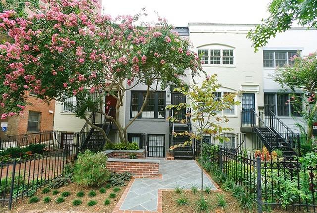 Dc row house for Row house garden design