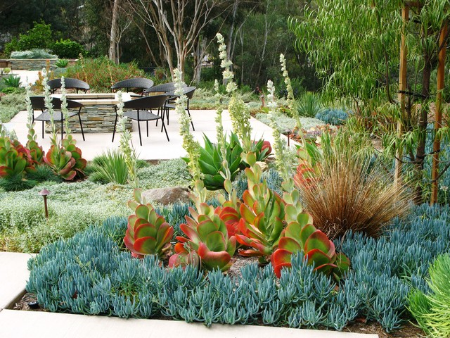 Debora carl landscape design contemporary landscape for Beach garden designs