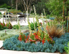 debora carl landscape design contemporary-landscape