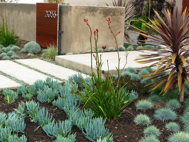 Design Ideas For A Contemporary Drought Tolerant Front Yard Landscaping In San Go