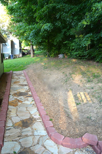 Deck/French Drain transitional-landscape