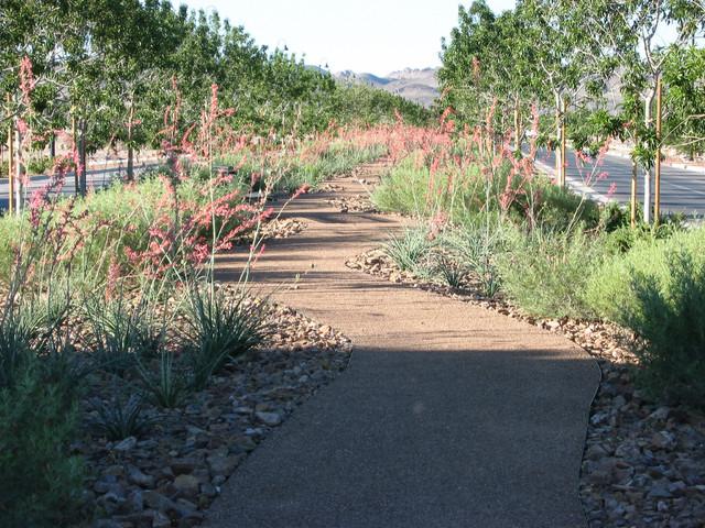 Informal Decomposed Granite Path Rustic Landscape San Francisco By SW Design