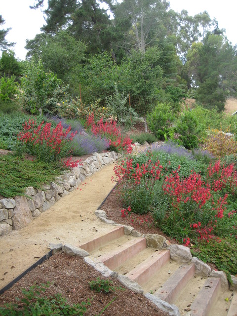 Decomposed Granite Path Through Hillside Garden Modern