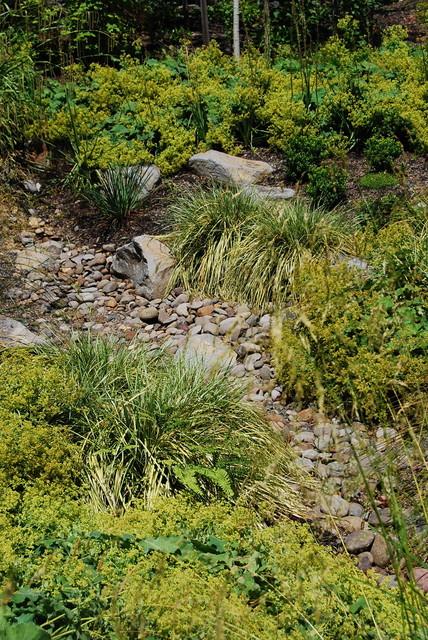 Decorative Stormwater Swale Contemporary Landscape