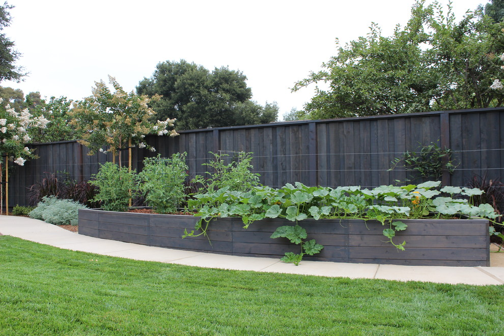 This is an example of a traditional vegetable garden landscape in San Francisco.