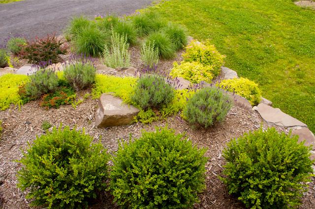 Bon Deer Resistant Gardens Traditional Landscape