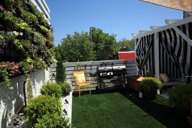 Dershowitz Backyard