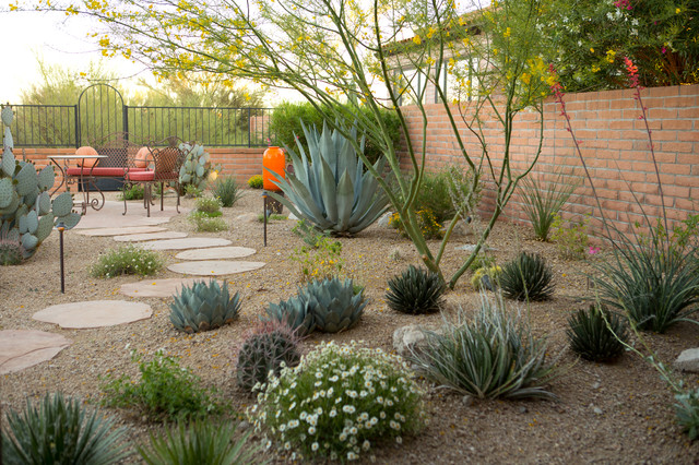 Desert gem mediterranean landscape other metro by for Desert landscape design