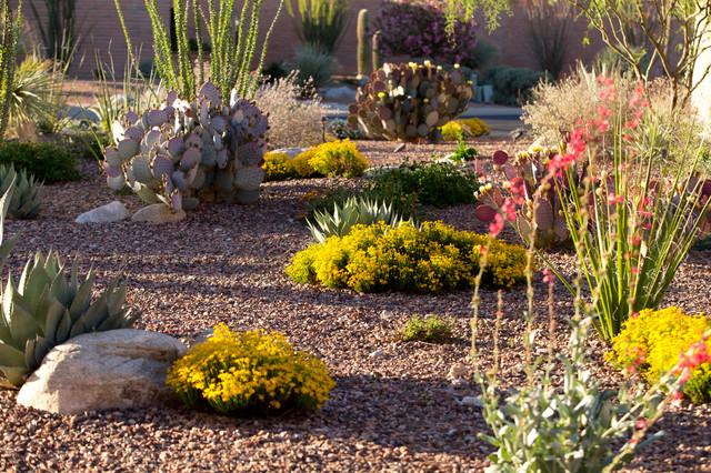 Nice Desert Garden Design Garden Design 29