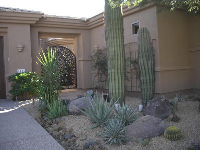 Desert landscaping southwestern landscape phoenix by desert crest llc