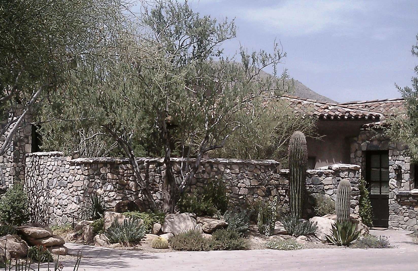 Desert Mountain--Entry Landscape