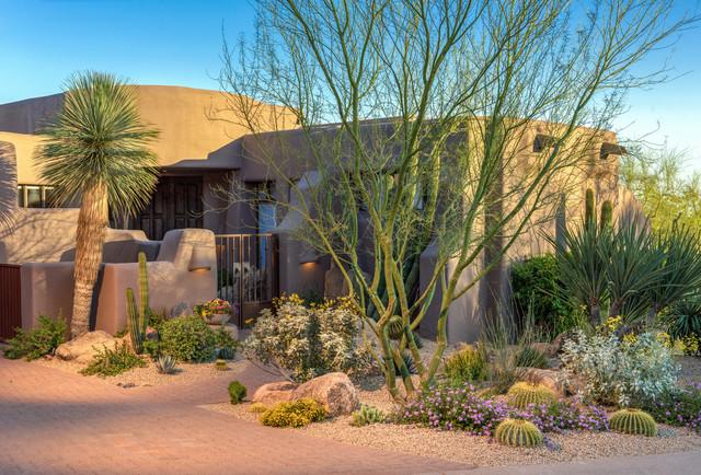 Desert Scape Southwestern Landscape Phoenix By Sustain Scape