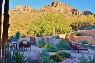 Oro Valley Desert Sublime