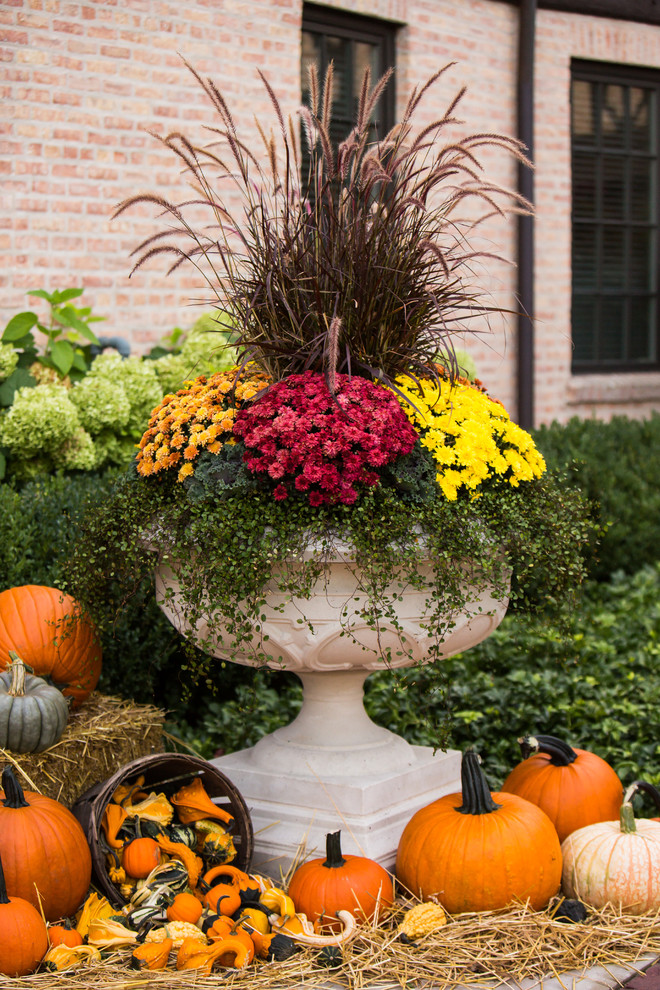 Photo of a large traditional full sun front yard landscaping in Chicago for fall.