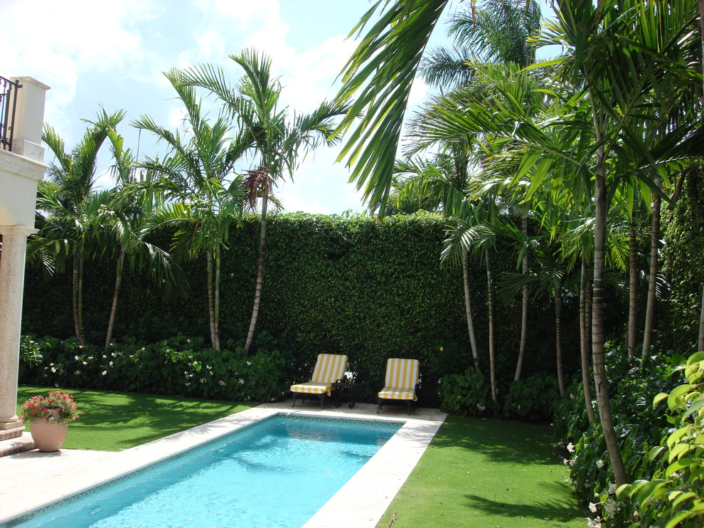 Designs By Todd MacLean Outdoor Living - Tropical ... on Tropical Outdoor Living id=28599