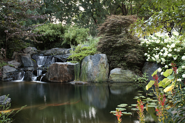 devote koi pond traditional landscape chicago by