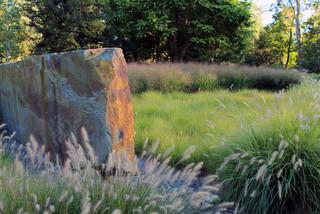 amenajare gradina naturala ierburi decorative graminee peisagistica design gradina moderna piatra naturala arhitect peisagist