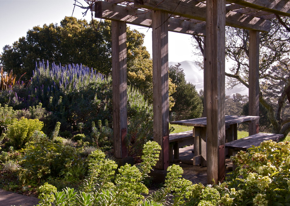Photo of a traditional backyard landscaping in San Francisco.