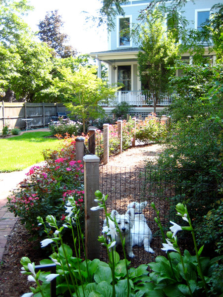 Dogs traditional landscape other metro by pat for Garden designs for dogs