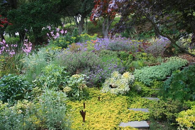 Drager rear garden slope at steps contemporary-landscape
