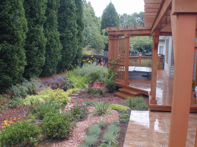 Drainage solution Raingarden Traditional Landscape Atlanta