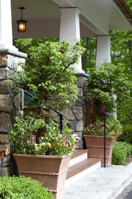Dream home container plantings armonk ny eclettico for Westover landscape design